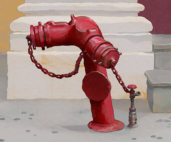 Secret Life of Hydrants